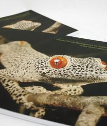 BB brochure cover
