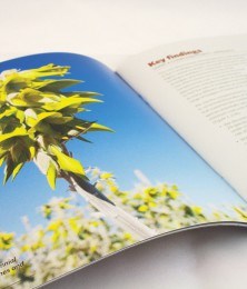 LEB brochure birdflower spread