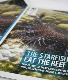 Crown of Thorns Starfish brochure cover